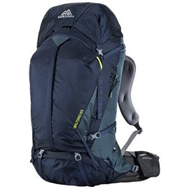 Gregory Mountain Products Men's Baltoro 65 Backpack