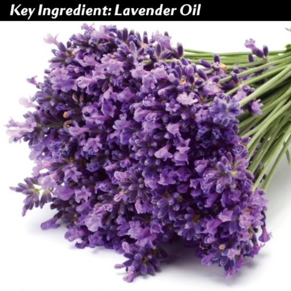 LAVENDER-SOAP-100-Pure-All-Natural-Certified-Organic-Aromatherapy-Herbal-Bar-Soap-0-2